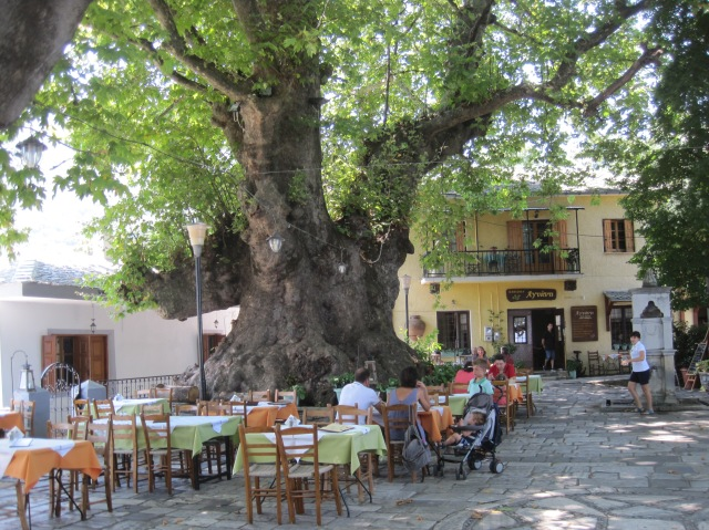Giant plane tree and plateia inTsangaradha, Pelion