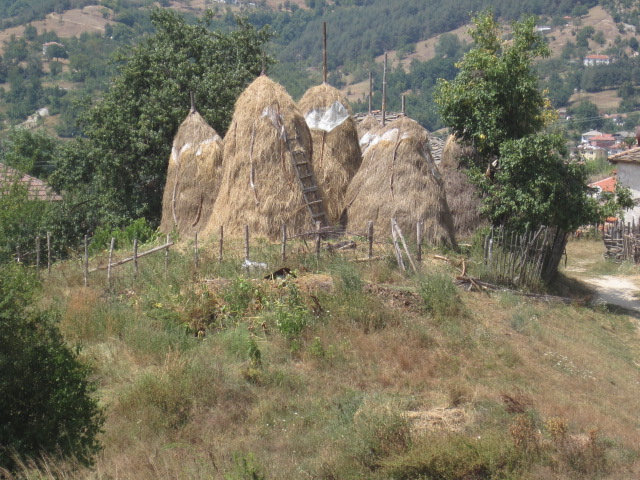 Haystacks in Bulgaria
