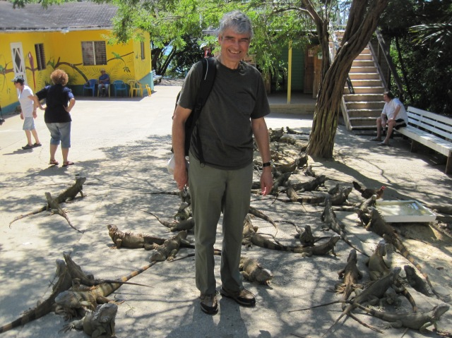 Walking among the iguanas, Roatan Island