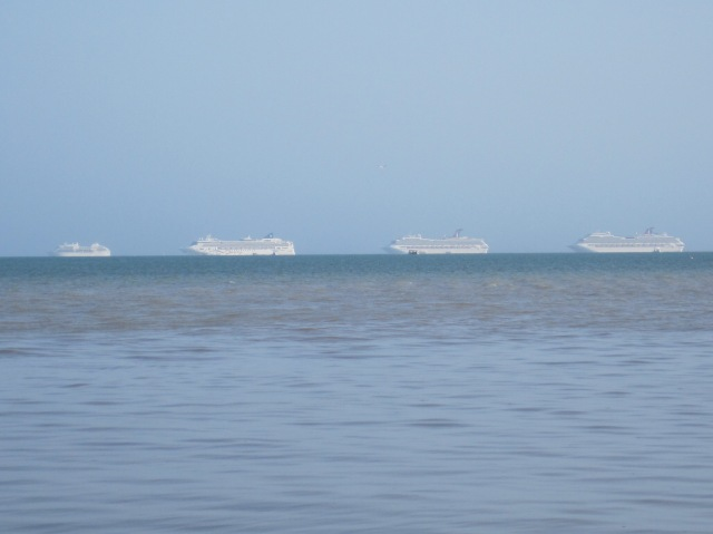 A line of cruise ships anchored at Belize City. Norwegian Star is second from the left.