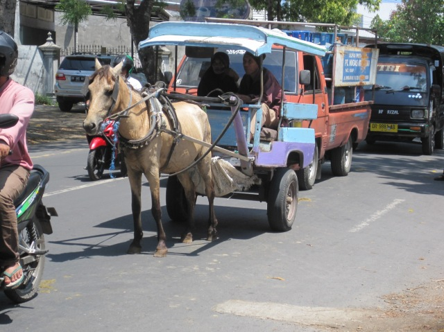 'One horse power' transport on Lombok