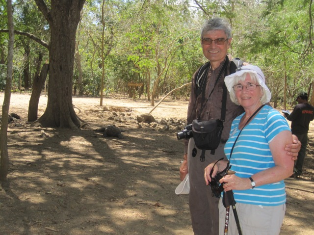 Visiting the dragons on Komodo Island