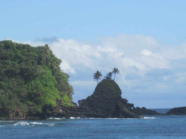 Palm trees on rocks, American Samoa