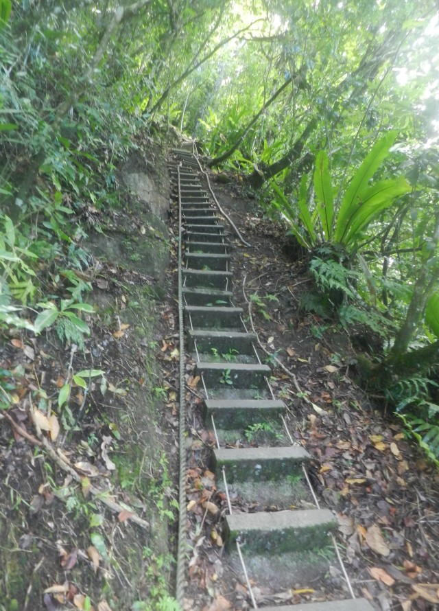 Hiking trail, American Samoa