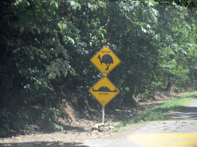 Road sign in the Daintree