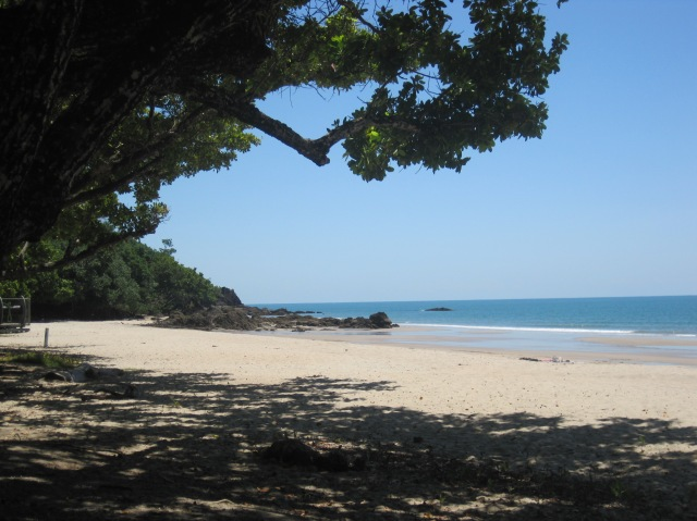 Etty Beach - no cassowaries