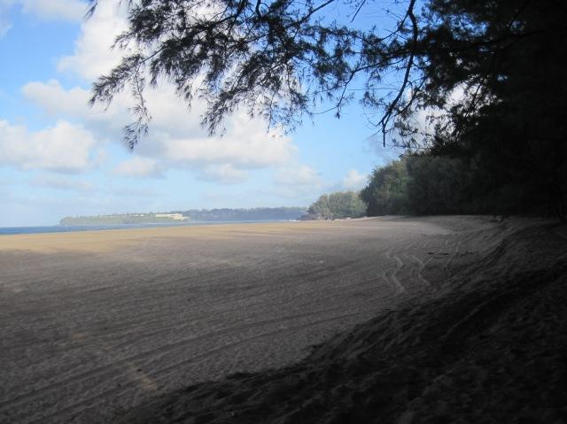 Lumaha'i Beach, Kauai