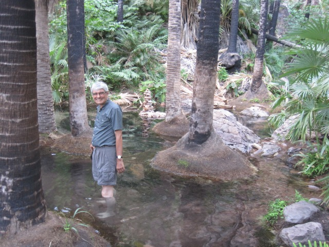 Zebedee Springs: somebody felt like a paddle